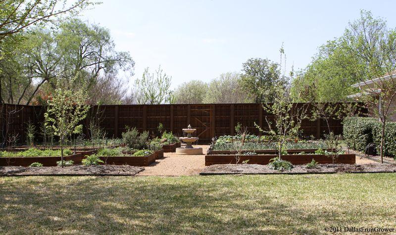 Garden in March 2011
