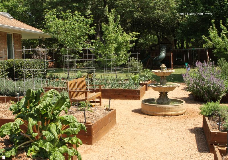 Garden - looking east - spring 2012